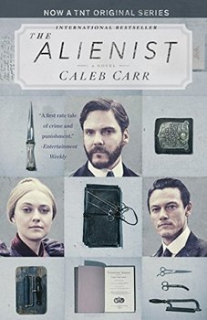 The Alienist by Caleb Carr is a classic whydunit.