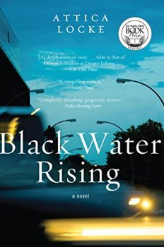 Corporate crime and political corruption are at the heart of Black Water Rising.