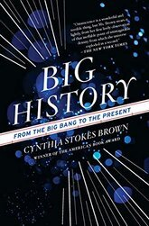 Image of Big History, one of the top nonfiction books about history